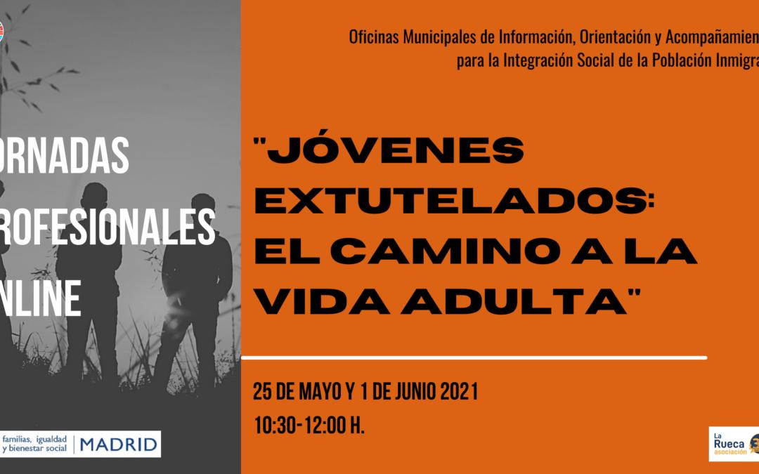 Clausura de las Jornadas Profesionales: Jóvenes Extutelados «El camino a la vida adulta»